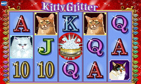 Key Features of Kitty Glitter