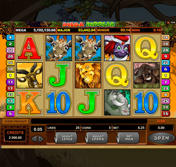 In-game action from the Mega Moolah slot game, available at PlayOJO